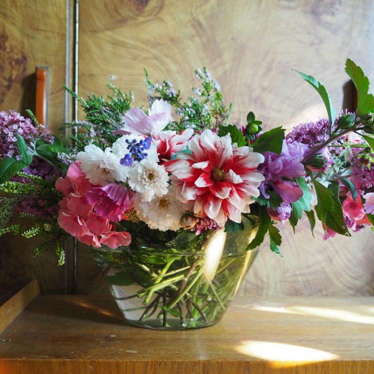 Květiny a Dekorace Ludwig Ostrava